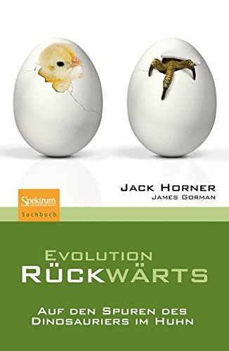 Evolution rückwärts: Auf den Spuren des Dinosauriers im Huhn