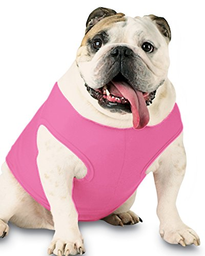 Doggie Skins 3902 Baby Pet Rib Tank, Raspberry Sorbet, Small
