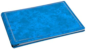 Amazoncom Pioneer Jumbo Magnetic Page X Pando Album Royal Blue