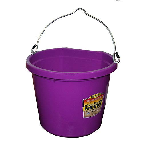 - Fortiflex Flat Back Feed Bucket for Dogs/Cats and Small Animals, 20-Quart, Vivid Violet
