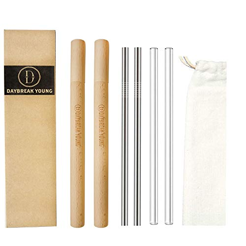 Daybreak Young Reusable Straw with Case, Metal Straw and Glass Straw, Includes 2 Stainless Steel Straws, 2 Glass Straws, 2 Wooden Cases, 2 Brushes, one Small Bag (Wood, Glass, Stainless Steel)