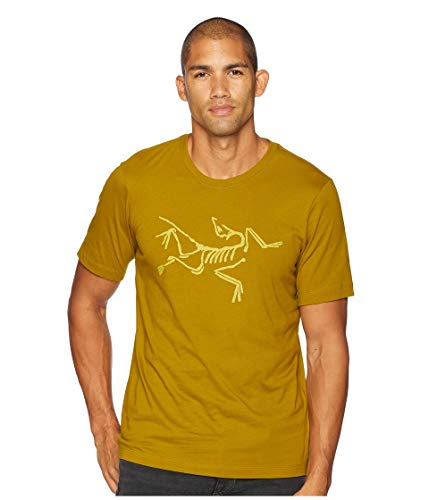 - Arc'teryx Men's Archaeopteryx Short Sleeve T-Shirt Olive Amber Medium
