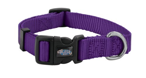 Weaver Leather Prism Snap-N-Go Collar, Medium, Purple