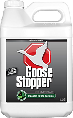 Messina Wildlife GSC320 2.5 gallon Concentrate Goose Stopper