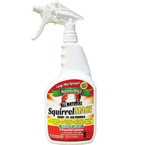 Squirrel MACE Squirrel Repellent 40oz Ready-to-Use Spray ()