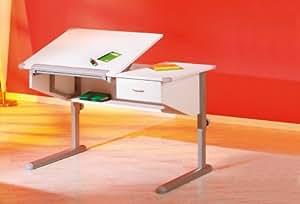 Homelife24 14018412117 SAMMY - Escritorio inclinable, color blanco/gris