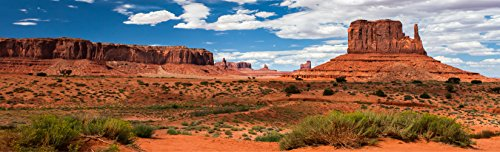 Reptile Habitat Background; Monument Valley Merrick Butte, for 36x18x24 Terrarium, 3-sided Wraparound