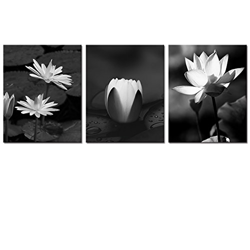 Visual Art Decor Flowers Lotus Canvas Wall Art Decor Black and White Floral Painting Prints Photograph Picture Printed on Canvas Framed and Ready to Hang Wall Decoration Decor (Lotus (White Flower Photograph)