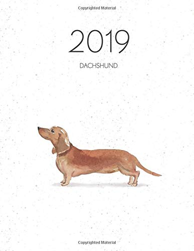 2019 Dachshund: Dated Weekly Planner With To Do Notes for sale  Delivered anywhere in Canada