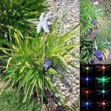 2 Pack Stainless Steel Dragonfly Color Changing Solar Light