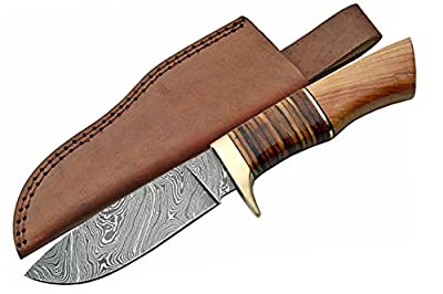 SZCO Supplies DM-1100 Damascus Stacked Leather/Olivewood Hunting Knife