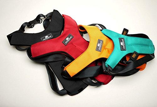 Sleepypod ClickIt Sport Crash-Tested Car Safety Dog Harness (Large, Jet Black)