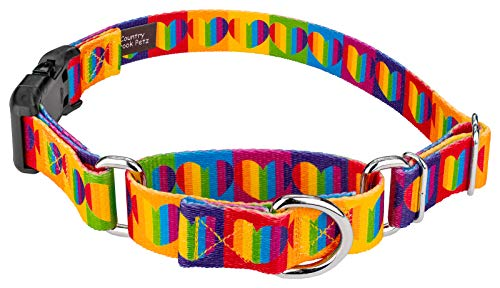 Country Brook Petz | Rainbow Hearts Martingale with Deluxe Buckle Dog Collar - Large