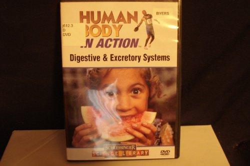 (Digestive & Excretory Systems)