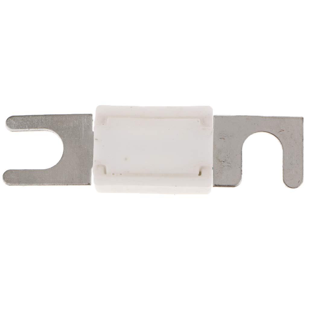 100A KESOTO Fusibile per Lama in Metallo Piatto per Ceramica da 1 Pezzo per 12V RV Bianco