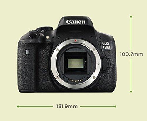 Canon EOS 750D Kit Fotocamera Reflex Digitale da 24 Megapixel con ...