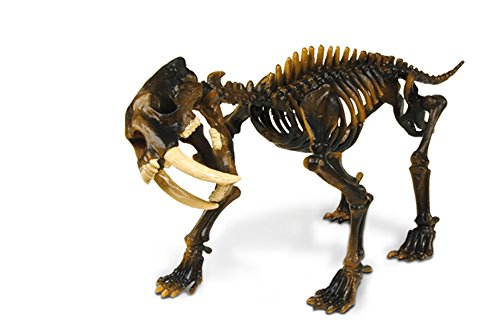 Geoworld Prehistoric Icebergs Sabre Tooth Tiger Skeleton Assembly Set by Geoworld