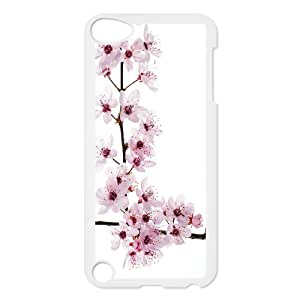 New Ipod Touch 5 Phone Case Star-Wars cherry blossoms SW1230074