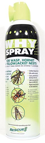 W-H-Y SPRAY FOR WASP HORNET & YELLOW JACKET NESTS - 14 OUNCE