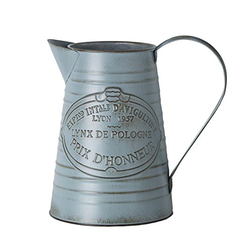 Longshow Vintage Watering Can Home Gardening Iron Flower Watering Decoration Vintage Flower Gardening Tin Watering Pot Bottle