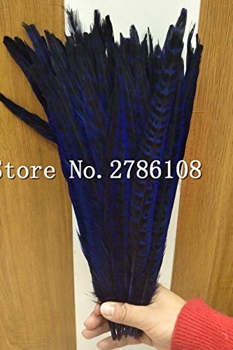 Maslin 100PCS Natural Feathers Ringneck Royal Blue Feathers 30-35cm Pheasant Feathers for Sale Decoration Wedding Material Christma ()