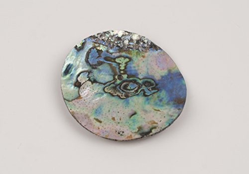 - Abalone Shell Discs - 2 Inch 2 Hole, 2 pieces