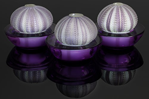 SeaThingz Flameless Candles - Sea Urchin for Indoor & Outdoor Decorative Novelty Lighting - LED Battery Operated Tealight for Elegant Home Decor - Unique Nonstandard Shaped Candle Purple pack of 3