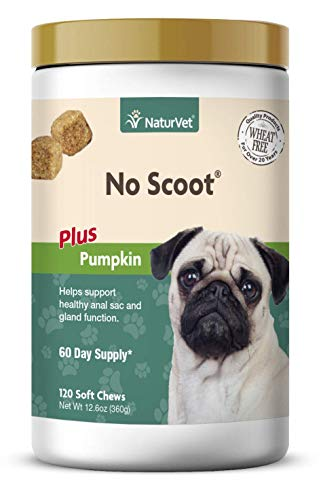 NaturVet - No Scoot for Dogs - Plus Pumpkin | Supports Healthy Anal Gland & Bowel Function | Enhanced with Beet Pulp, Flaxseed & Psyllium Husk (120 Soft Chews)