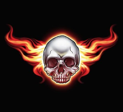 (Wallmonkeys Flaming Skull Wall Decal Peel and Stick Graphic WM114040 (30 in W x 27 in H))