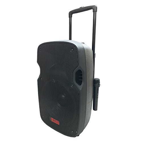 Battery Powered Portable PA System with 2 Wireless Microphones - 12