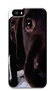 iPhone 5 5S Case Curious Labs Animal 3D Custom iPhone 5 5S Case Cover