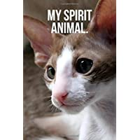 Image for My Spirit Animal: Oriental Shorthair Kitten Journal