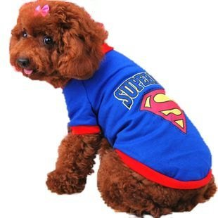 The d (Superman Dog Costumes)
