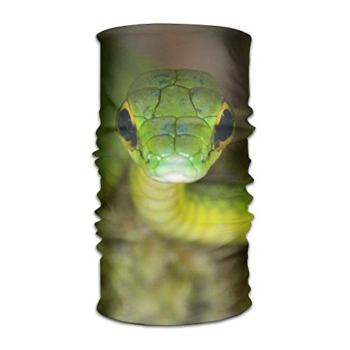 - PengMin Green Cobra Unisex Fashion Quick-drying Microfiber Headdress Outdoor Magic Scarf Neck Neck Scarf Hooded Scarf Super Soft Handle