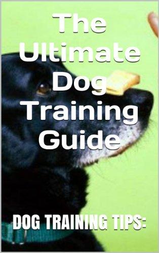 Training Dog Tips (Dog Training Tips: The Ultimate Dog Training Guide)