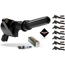 Tune Up Set™ Complete Set of 8 Heavy Duty Ignition coil DG-508 & 8 Motorcraft spark plug SP-413