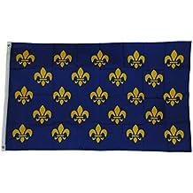 Fleur De Lis Small Blue Sq Crossbar Flag 3 X 5 3x5 Feet New Polyester