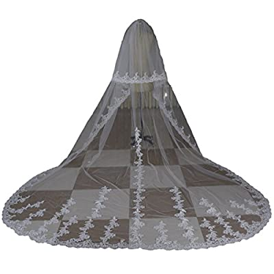 Newdeve White Ivory Tulle Sheer Lace Edge Cathedral Veil 2 Tier Chapel Veil with Comb
