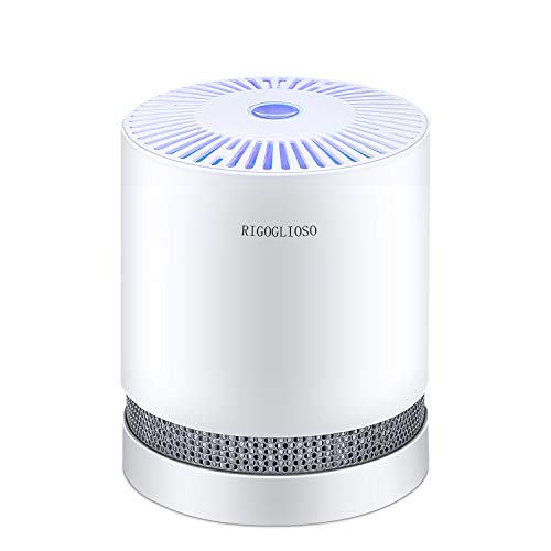 RIGOGLIOSO Air Purifier for Home with True HEPA Filters, Compact Desktop Purifiers Filtration with Night Light, Air Cleaner,GL2109