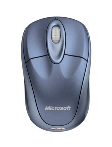 6a198d5e35e Amazon.com: Microsoft Wireless Notebook Optical Mouse 3000 - Winter Blue:  Electronics