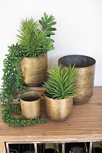 Flower Finish (Kalalou Set of Aged Brass Finish Metal Flower Pots, One Size)