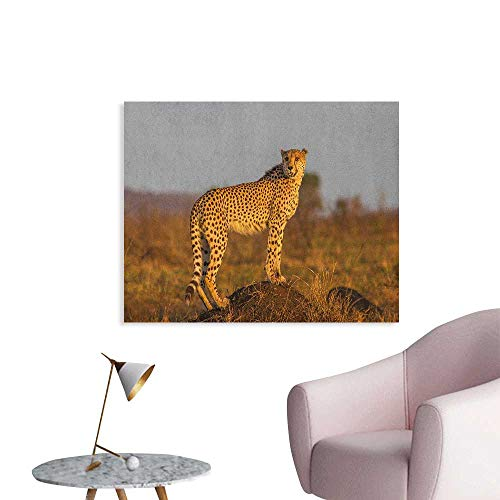Safari Photographic Wallpaper African Wild Animal Cheetah Standing on Termite Mound Savannah Nature View Cool Poster Ginger Apricot Dust W32 xL24