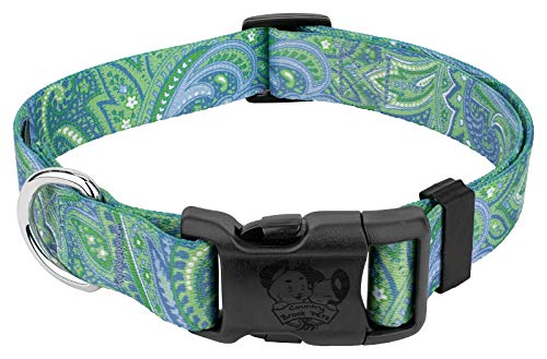 - Country Brook Petz - Green Paisley Deluxe Dog Collar (Large)