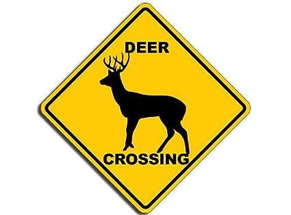 Image result for deer crossing