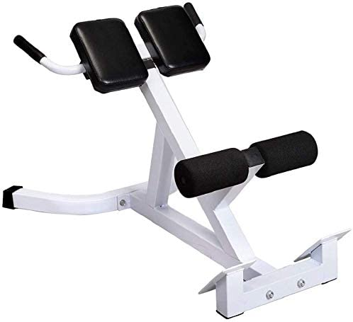 US Bench Roman Chair Back Adjustable Bench Strength Training Back Machines