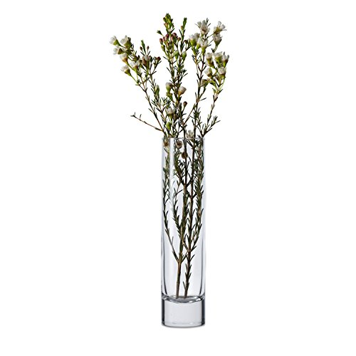 Plastic Cylinder Vases Amazon
