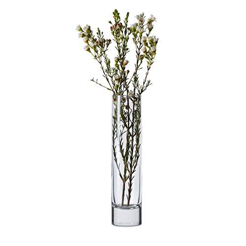 Libbey 7-1/2-Inch Cylinder Bud Vase, Set of (Plastic Cylinder Vase)