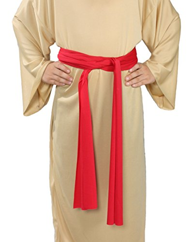 Alexanders Costumes Story of Christ Biblical Sash Child, Red, One Size