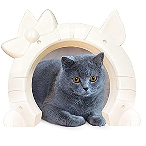 Amazon Built In Interior Pet Cat Door For All Size Cats Hole
