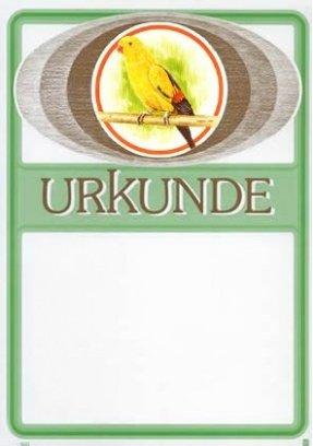 Albert Hoffmann Urkundenverlag Vögel   840   768 768 768   Srohsittich   PC-Urkunden (170 g m²) 50 Stk B00AIMHS82 | Schöne Farbe  a317ea